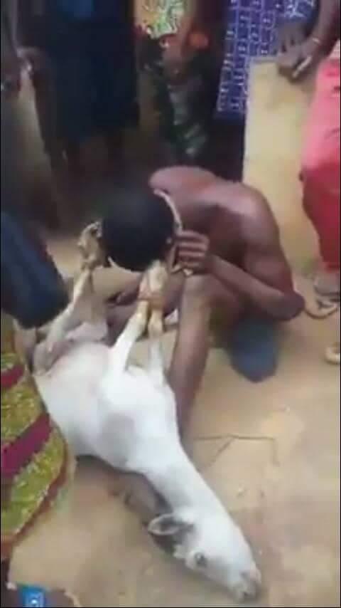 This Sex in benin nigeria this