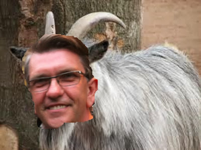 Image result for mozziah joyce goat