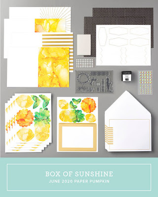June 2020 Stampin' Up! Paper Pumpkin monthly subscription stamp kit, handmade cards, treat packaging