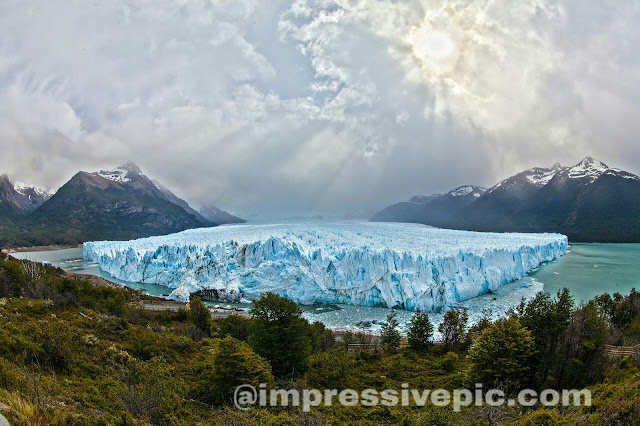 Blue ice in green forest
