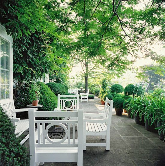 Classic Connecticut Garden: The Zhush: Book Review: Bunny Williams On Garden Style