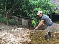 Apa Itu Metode Ramah Lingkungan dalam Pengelolaan Limbah?