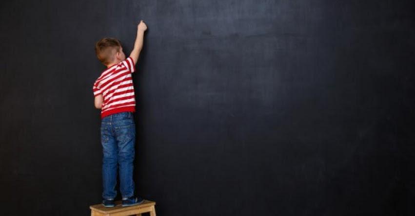 La escuela flexible que necesitaremos el 2021 (Santiago Cueto)