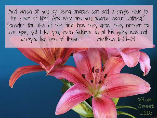 Matthew 6:27-29