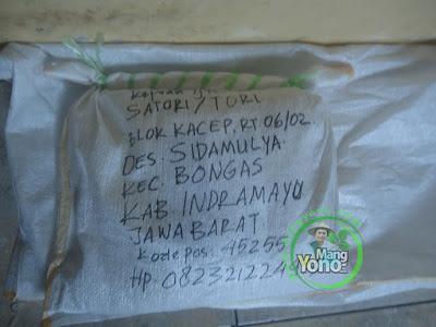 Mas SATORI / TORI Indramayu pembeli benih padi TRISAKTI  sebanyak 5 Kg atau 1 Bungkus