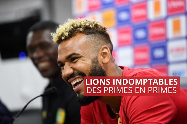 LIONS INDOMPTABLES : DES PRIMES EN PRIME