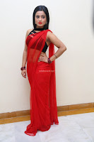 Aasma Syed in Red Saree Sleeveless Black Choli Spicy Pics ~  Exclusive Celebrities Galleries 048.jpg