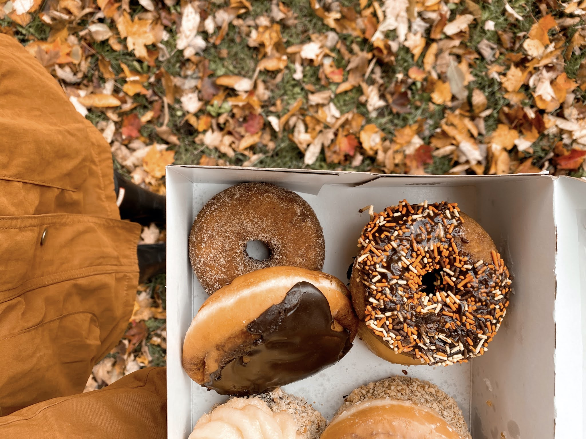 Festive Donuts for Fall | biblio-style.com