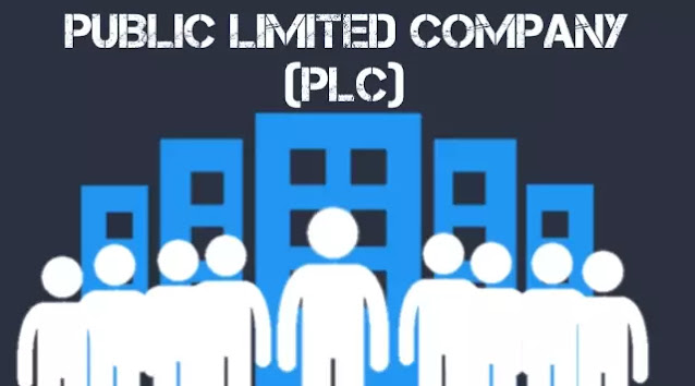 public-limited-company-definition