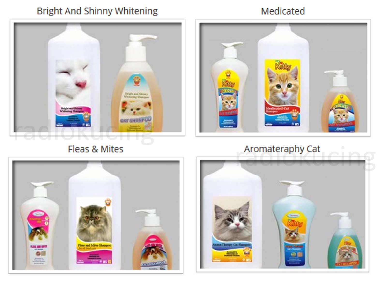 Review Sampo Kucing My Kitty Aroma Theraphy Cat Shampoo Radiokucing Com
