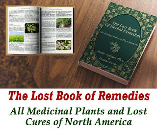 the-lost-book-of-remedies