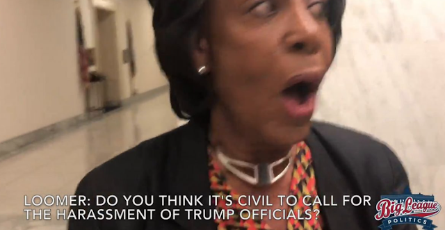 Conservative Investigative Reporter Confronts Maxine Waters