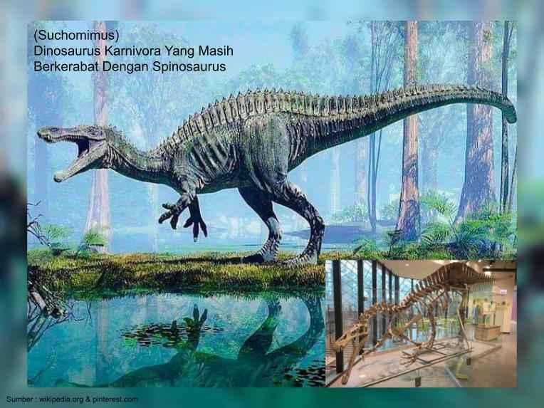 suchomimus, kerabat dari spinosaurus