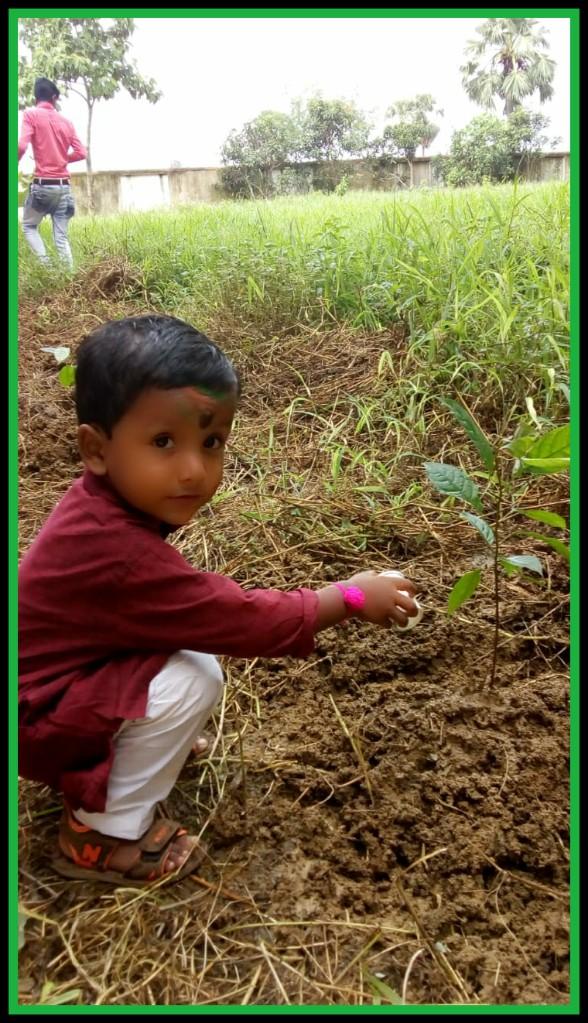 বৃক্ষরােপণের প্রয়োজনীতা,child, tree,planting,watering