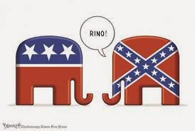 ¿Qué Significa RINO?