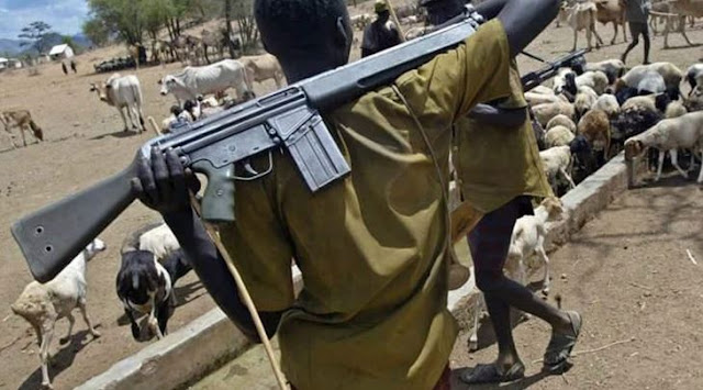 Herdsmen open fire in Benue, kill 3
