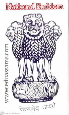 How many national symbol in India, importance of national symbols, indian national animal, national bird, national emblem, national flower, national tree, our national symbol?, What are the 5 National symbols,
