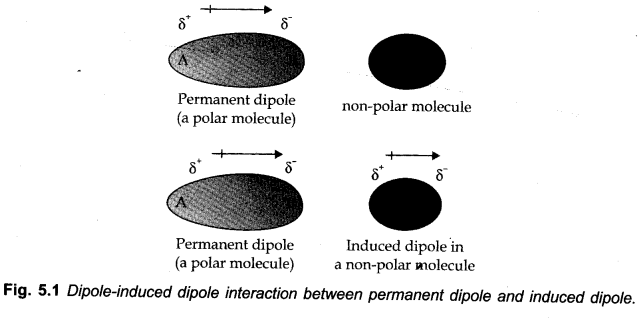 Ion-induced Dipolar Interactions