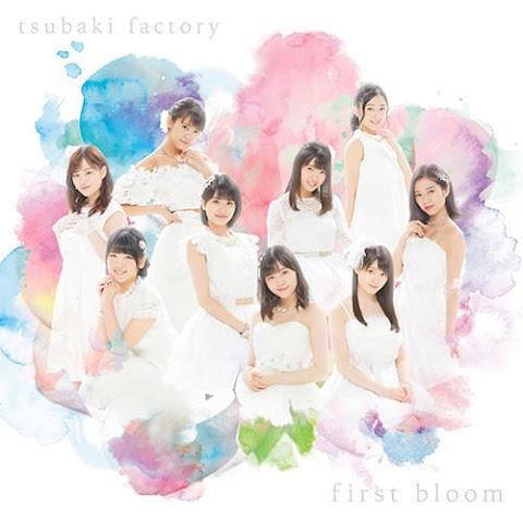 [Lirik] Tsubaki Factory - Kaerou Let's Go! (Terjemahan Indonesia)