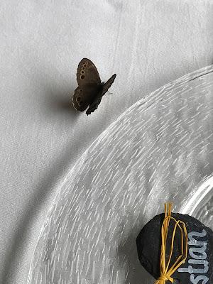 Schmetterling, Hochzeit in Gelb, Sommer, Sonne, Natur, Sommerhochzeit am See in den Bergen, Riessersee Hotel Garmisch-Partenkirchen, Hochzeitsplanerin Uschi Glas