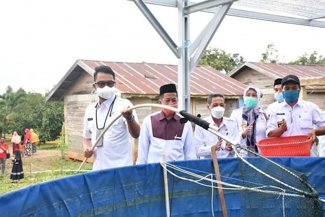 Panen Ikan Nila di Ponpes Darul Istiqamah Lappae, Bupati ASA: Pemerintah Siap Membantu Pasarkan