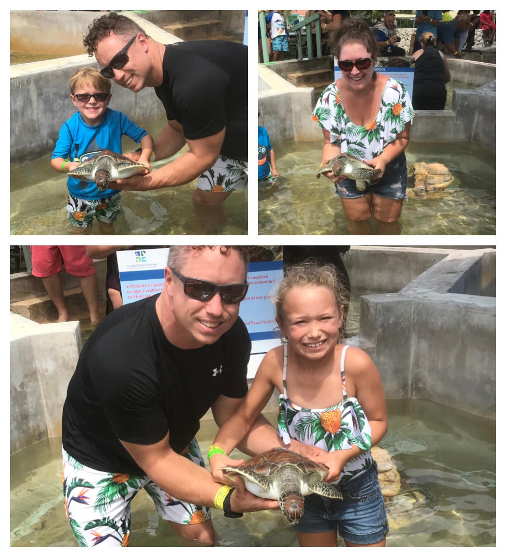 Swimming with Sting Rays & Sea Turtles in Grand Cayman