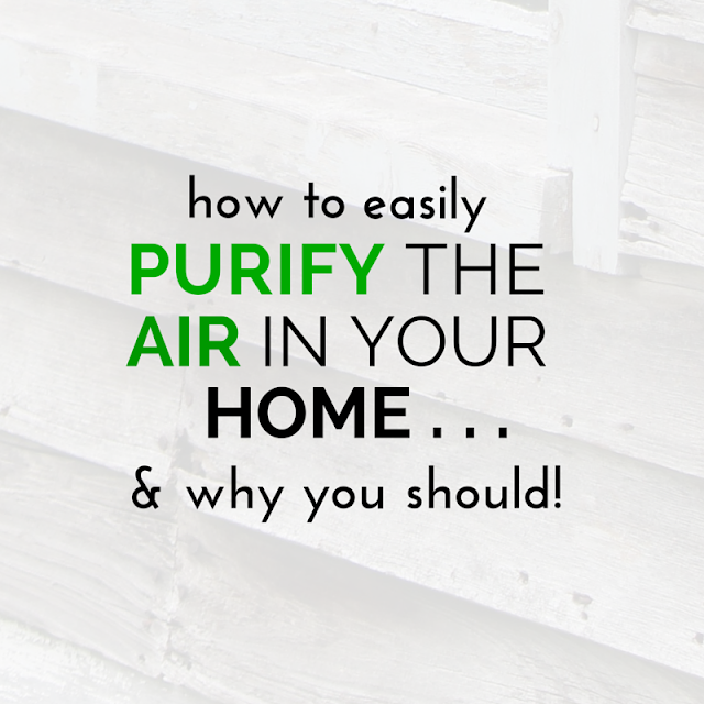 The air in your home could be more polluted than your outside air causing flu, headaches and serious disease! Tap into quick strategies here for easy solutions to remedy those musty smelling and toxin-laden environments to breath easy and make your home smell great! TheHealthMinded.com