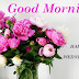 Top 10 Good Morning Happy  Wednesday images Photos, greetings, pictures for Whatsapp