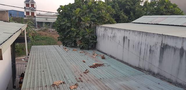 Bán đất tặng nhà 1 trệt 1 lầu, khu thương mại Trường Sơn, ngay chợ Phú Phong, Vòng Xoay An Phú, Bình Chuẩn, Thuận An, Bình Dương