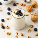 Vegan Coconut Yoghurt | danceofstoves.com #vegan