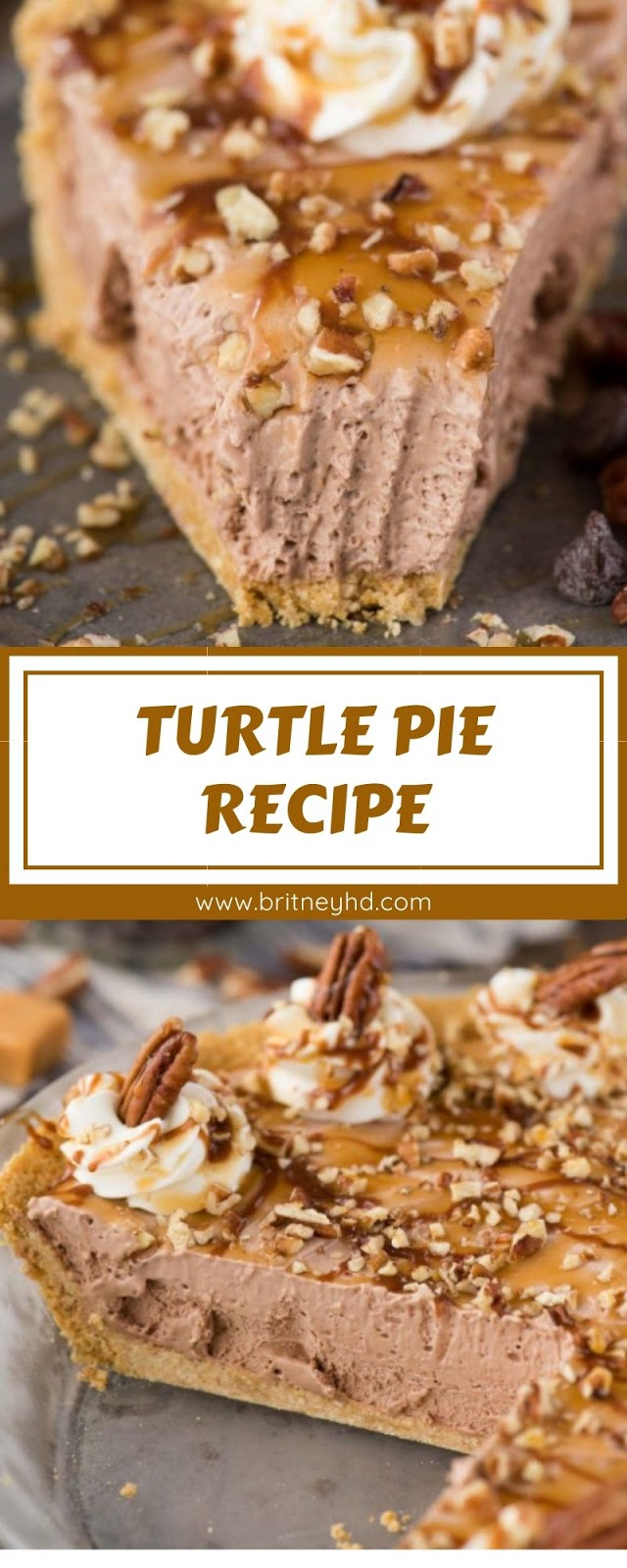 TURTLE PIE RECIPE