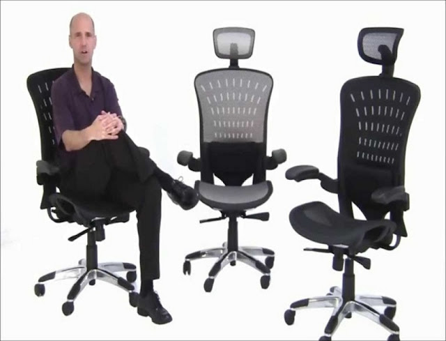 Edward ergonomic office chair best buy for sale