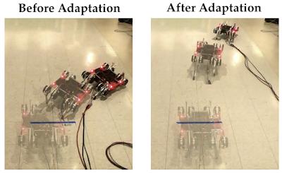 Exploring Evolutionary Meta-Learning in Robotics