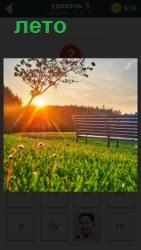 800 слов наступило лето и светит солнце 5 уровень