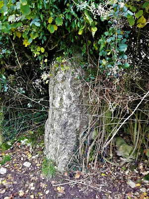 Clopook Standing Stone, Laois
