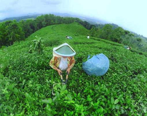 Tempat Wisata Ngawi Ini Wajib Anda Kunjungi