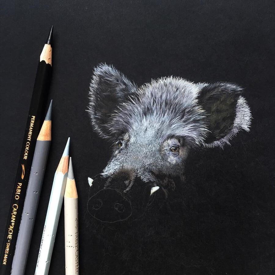 10-Wild-pig-WIP-Ruzanna-www-designstack-co