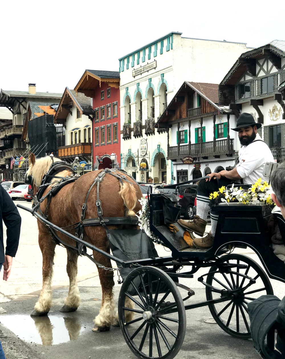 leavenworth, wa horse carriage