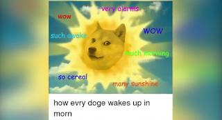 Dogecoin trending meme