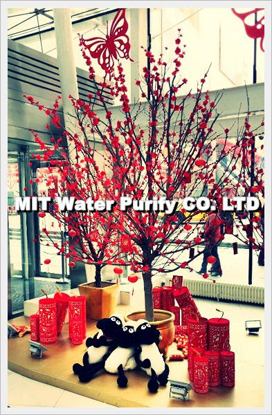 The Chinese shopping mall Celebrate The Traditional Chinese Lunar New Year(The Spring Festival)-2 by MIT Water Purify Professional Team Company Limited
