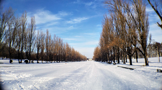 札幌・冬の前田森林公園