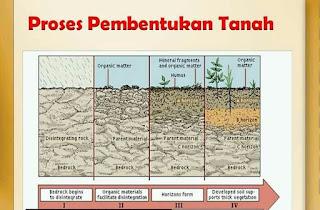 Proses Pembentukan Tanah, Faktor dan Jenis Tanah