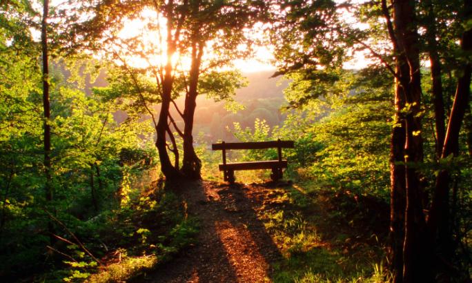 Sinar matahari bisa mengurangi tumbuhnya jerawat
