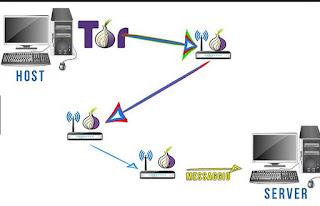 Programma Tor