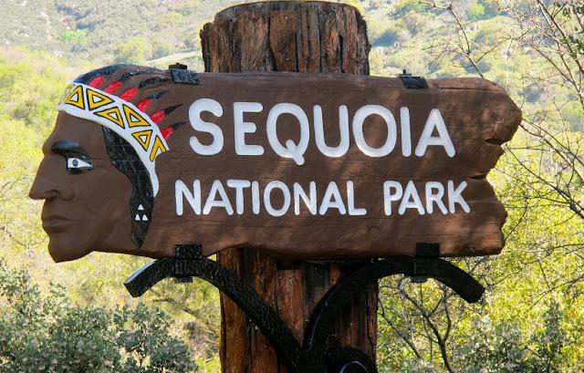 Informações sobre o Parque Nacional da Sequoia na Califórnia