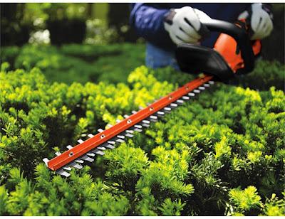 Best Value Hedge Trimmer