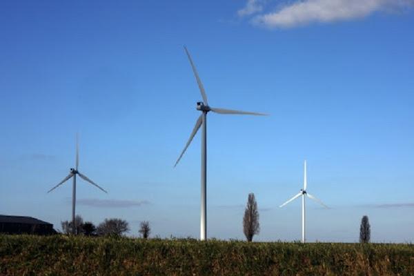 Le Conseil d'Etat valide la construction d'un grand parc éolien contre l'avis des défenseurs de l'environnement