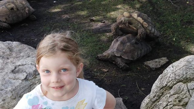 """Took my daughter to the zoo and she wanted a picture with the """"dancing turtles"""""""