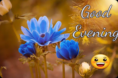 Good evening images free download