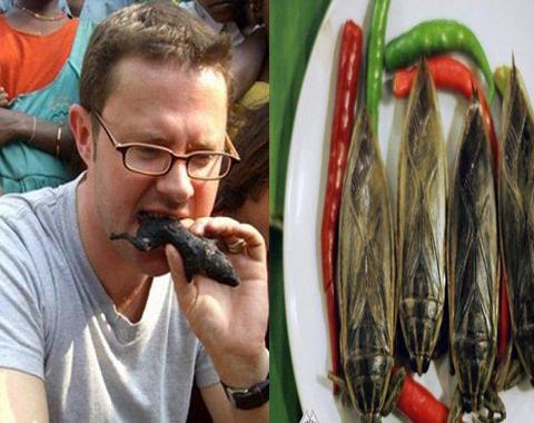 صور أغرب 5 أطعمة مقززة حول العالم لن تستطيع تناولها